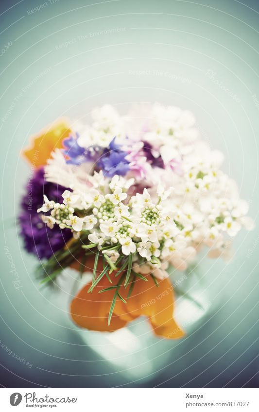 Blue Plant White Flower Yellow Love Blossom Gift Retro Romance Bouquet Vase Mother's Day