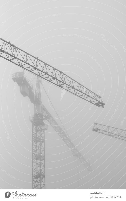 smoke cranes Work and employment Profession Crane operator Construction site Air Sky Clouds Summer Autumn Weather Bad weather Fog Town Sharp-edged Creepy Tall