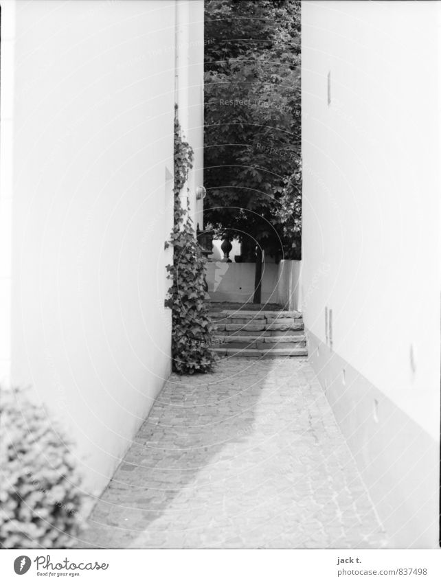 Shady place Port City Populated House (Residential Structure) Wall (barrier) Wall (building) Stairs Stone Moody Hallway Black & white photo Exterior shot Day