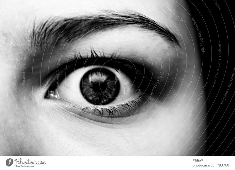 Boo! Frightening Looking Pupil Black Dark Woman Fear Panic Face Shadow Iris Black & white photo Snapshot Eyelash