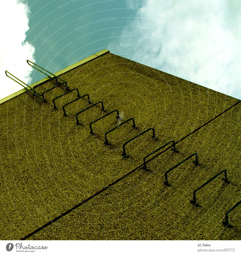 Sky Green House (Residential Structure) Wall (building) Architecture Concrete Crazy Stairs Ladder