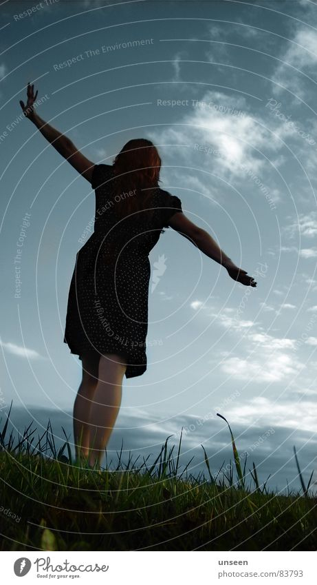 weather with you Joy Freedom Woman Adults Arm Sky Grass Meadow Dress Green Blade of grass Silhouette Young woman Joie de vivre (Vitality) Swing Rear view
