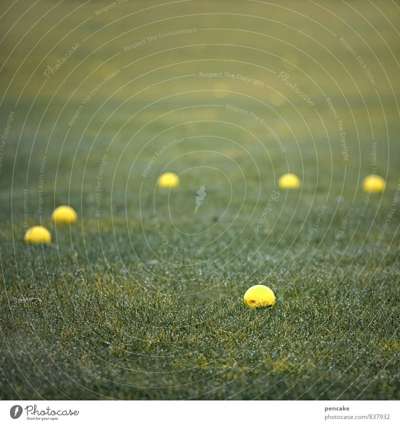 Rømø | golf of havneby Sports Golf course Nature Landscape Spring Summer Grass Meadow Famousness Happiness Hip & trendy Maritime Modern Clean Yellow Green