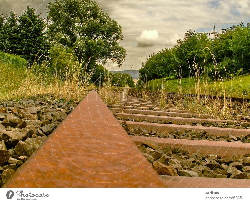 There's no train to anywhere. Ancillary road Uneconomical Railroad tracks Environment Shut down Rust Recycling Bushes Stainless Resume Clouds Wilderness