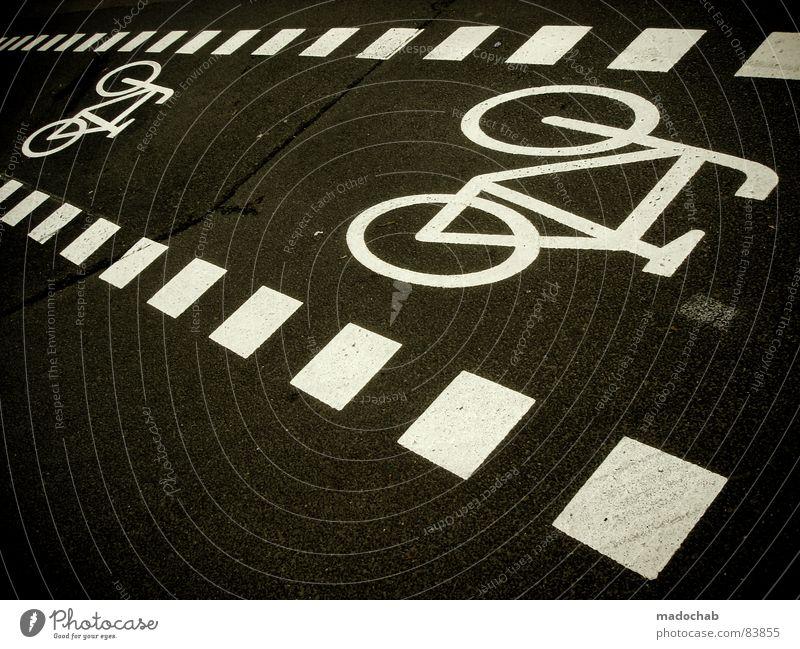 BIKE City Joy Street Life Lanes & trails Gray Movement Bicycle Signs and labeling Transport Communicate Driving Illustration Asphalt Square