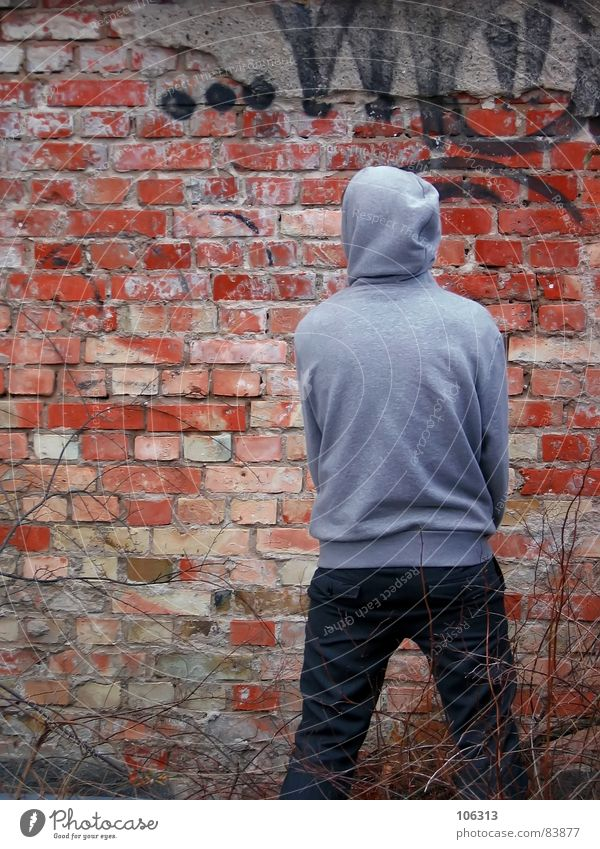 WANTED Wall (building) Masculine Man Fellow Brick Wall (barrier) Daub Posture Composing Painted Coincidence Bushes Hooded sweater Graffiti Shabby Mural painting