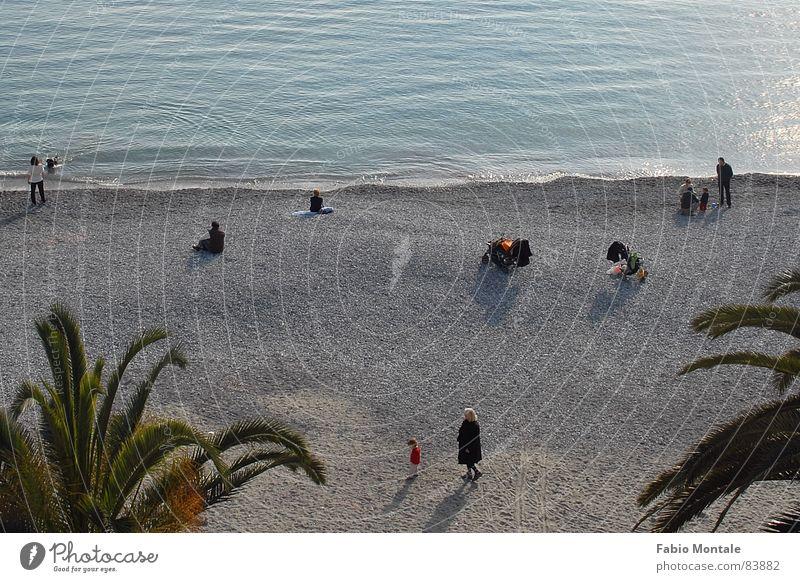 sunday morning beach Santa Margherita Ligure Italy Pebble beach Liguria Palm tree Ocean Sunday Leisure and hobbies winter beach