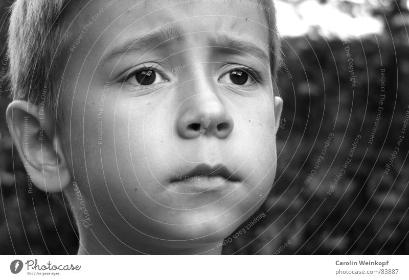 Longing? Cheek Child Small Sweet Black Student Jug ears Lips Chin Brown eyes Furrowed brow Far-off places Moritz Boy (child) B/W Black & white photo Schoolchild
