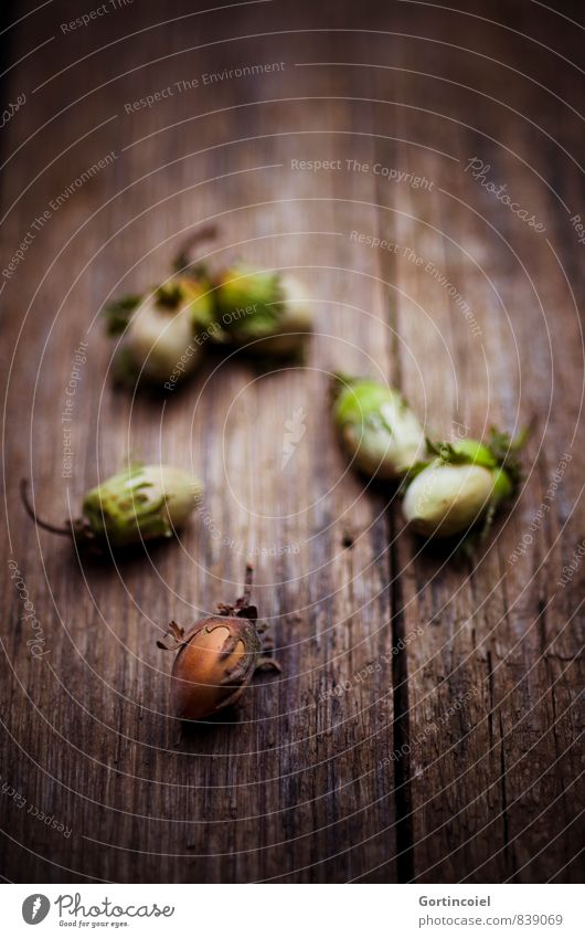 hazelnuts Autumn Winter Brown Nut Hazelnut Wooden table Autumnal Christmas & Advent Thanksgiving Hazel brown Colour photo Subdued colour Interior shot
