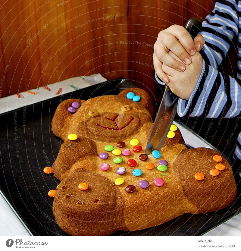 So bear Bruno really died Teddy bear Chocolate buttons Cake Hand Cut Kill Birthday cake Tin Nutrition Pierce Fingers Child Children`s hand Baked goods Bear