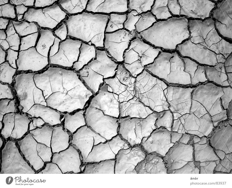 dry earth Dry Pattern Hot Gray Drought Desert Black & white photo Earth Crack & Rip & Tear Floor covering Thin not damp very warm