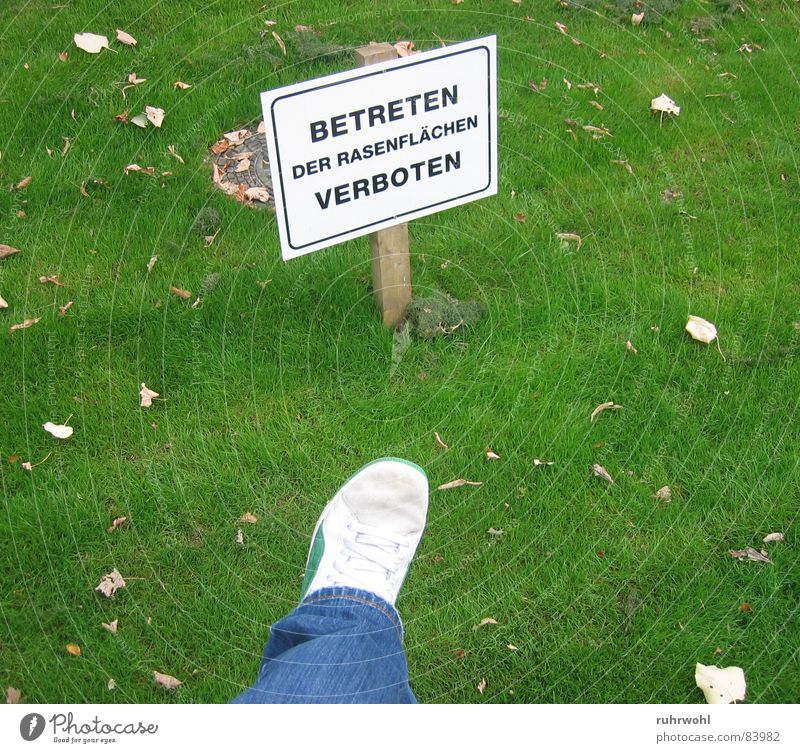 No trespassing!² Exceed Risk Isolated Green Meadow Juicy Poison Footwear Fear Barrier Leaf Brown Stripe Black Narrow Repression Exterior shot Sneakers Impulse