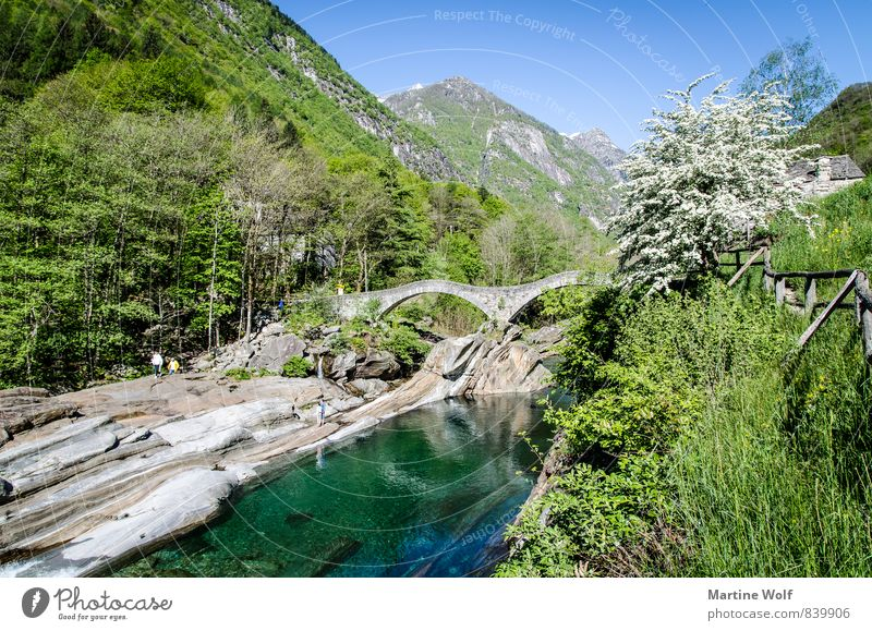 Nature Vacation & Travel Landscape Idyll Europe Bridge Alps River bank Switzerland Canton Tessin