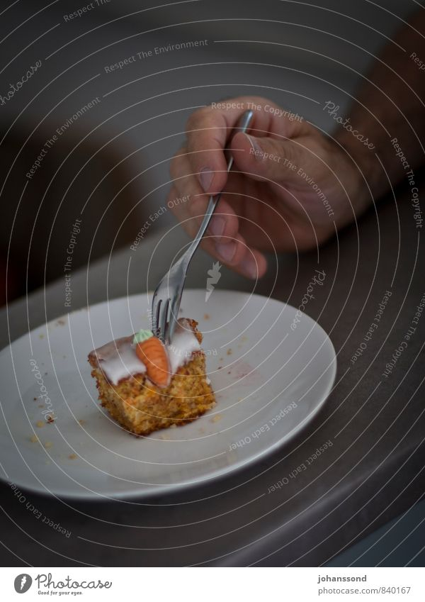 turnip tail Cake Dessert To have a coffee Plate Fork Hand Fingers Eating Feasts & Celebrations To enjoy Simple Cold Delicious Natural Round Gray