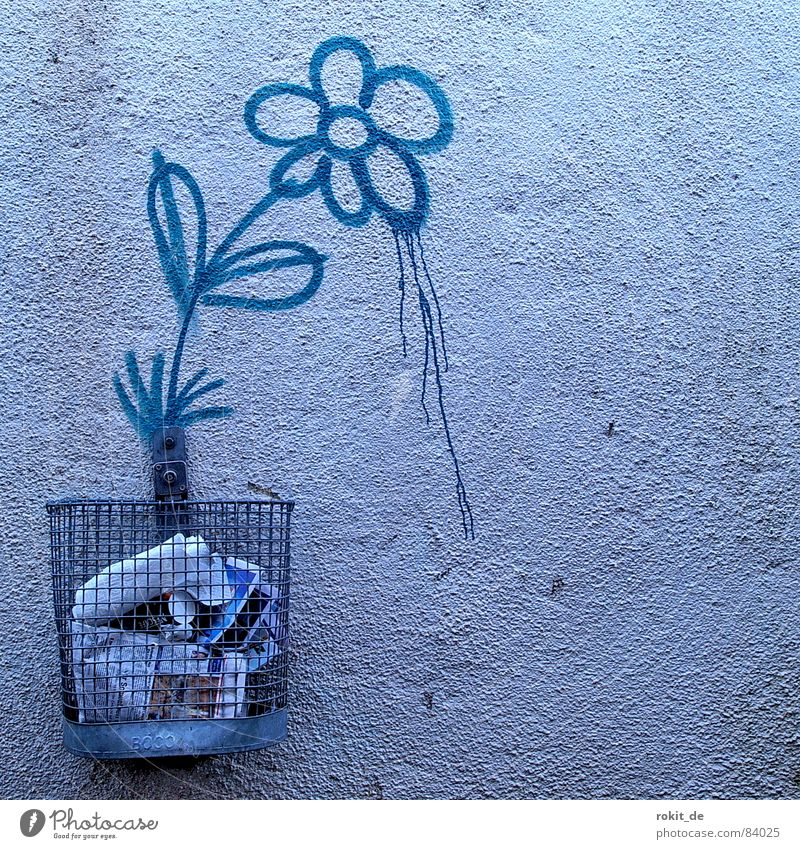 hatschiiieee... Growth Trash Bucket Trash container Wastepaper basket Basket Wall (building) Bla Flower Stalk Blossom Spray Dandelion Trickle Tagger Blossoming