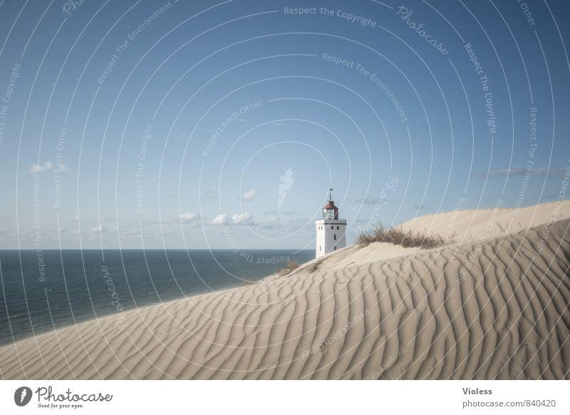 sandman Vacation & Travel Summer Sun Beach Ocean Waves Coast Bay North Sea Discover Relaxation Beach dune Dune Rubjerg Wanderdüne Rubjerg Knude Lighthouse
