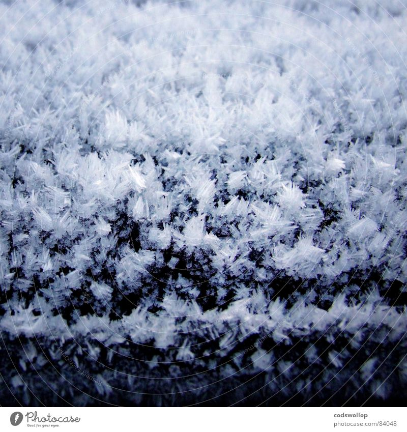 Winter Cold Snow Ice Weather Frost Express train Hoar frost Ice crystal