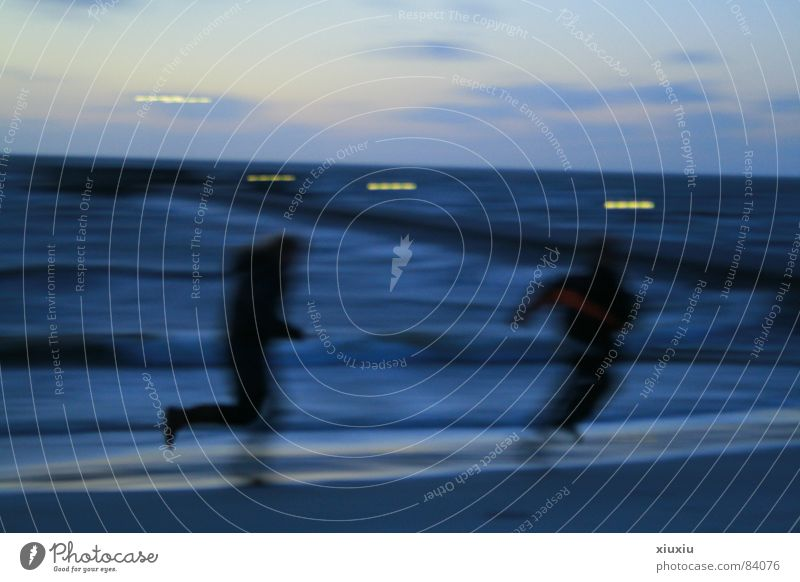 ijselmeer Ocean Children's game Beach Coast Sunset Motion blur Sky Evening Winter Weather Human being on the coast Firmament Dusk
