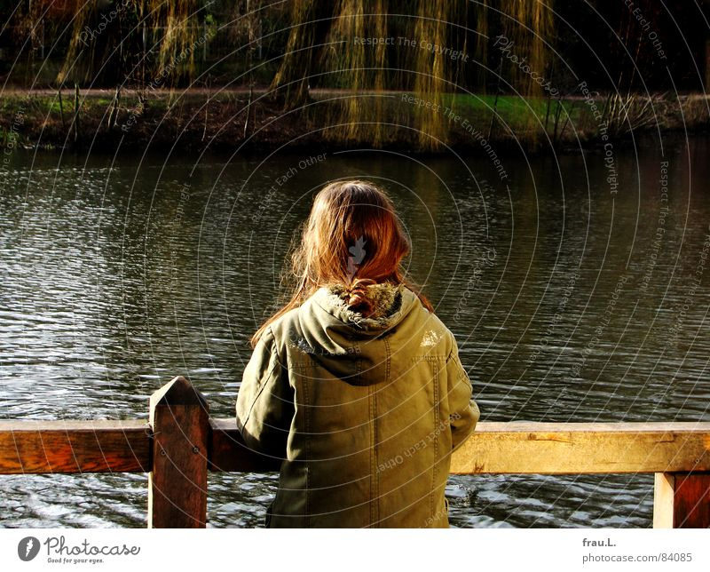 At the lake Lake Water Pond Tree Fence Loneliness Wait Lakeside Willow-tree Willow tree Observe Calm Peace Child Girl Leisure and hobbies parker Escarpment