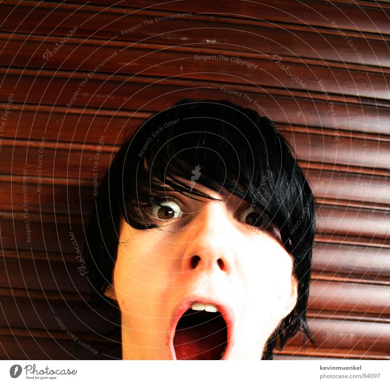 Black Eyes Wood Hair and hairstyles Mouth Brown Fear Scream Panic Freak Loud Cry for help Amazed Marvel Sounds of levity Curved