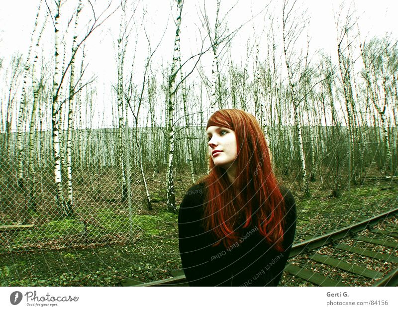 peace-loving Reconcile Resume Henna red Past Future Woman Feminine Green Red Birch tree Railroad tracks Birch wood Direction Backward Peace Reconciliation