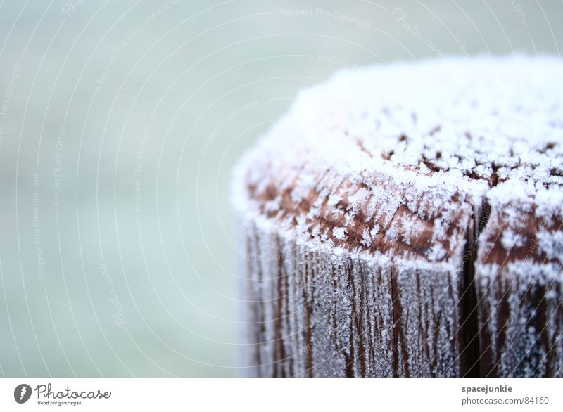 sugar icing Cold Seasons Wood Wooden stake Rural Winter Ice Rustic Macro (Extreme close-up) Close-up Snow chill