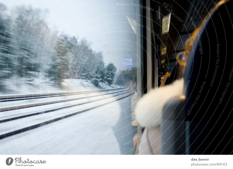 Railway impressions Railroad tracks Window Wanderlust Forest Regional railroad Winter Snowscape Tourism Leisure and hobbies Commuter Cold Physics Speed Lean
