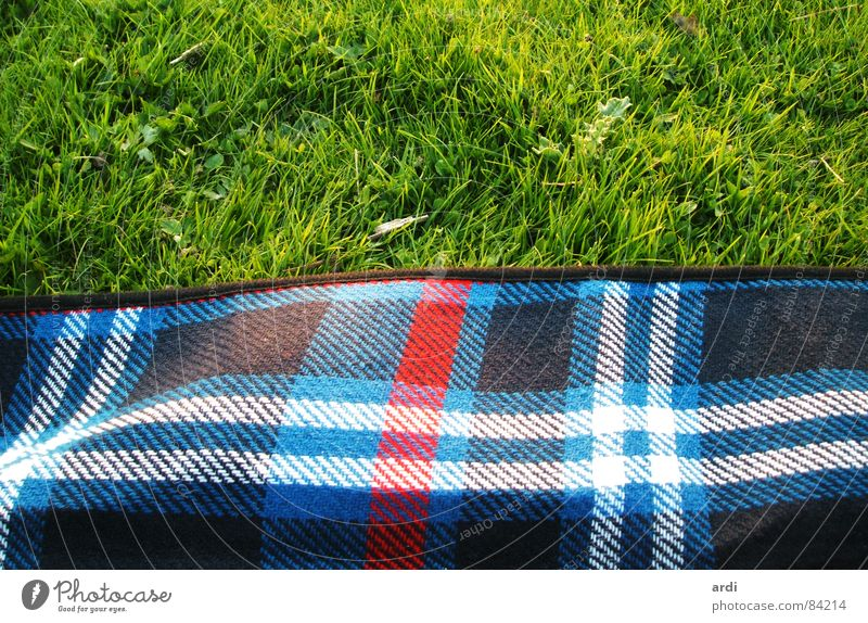 picnic Picnic Grass Meadow Plant Summer Physics Pattern Soft Multicoloured Relaxation Leisure and hobbies Nature Square Lawn Warmth Blanket Line Contentment