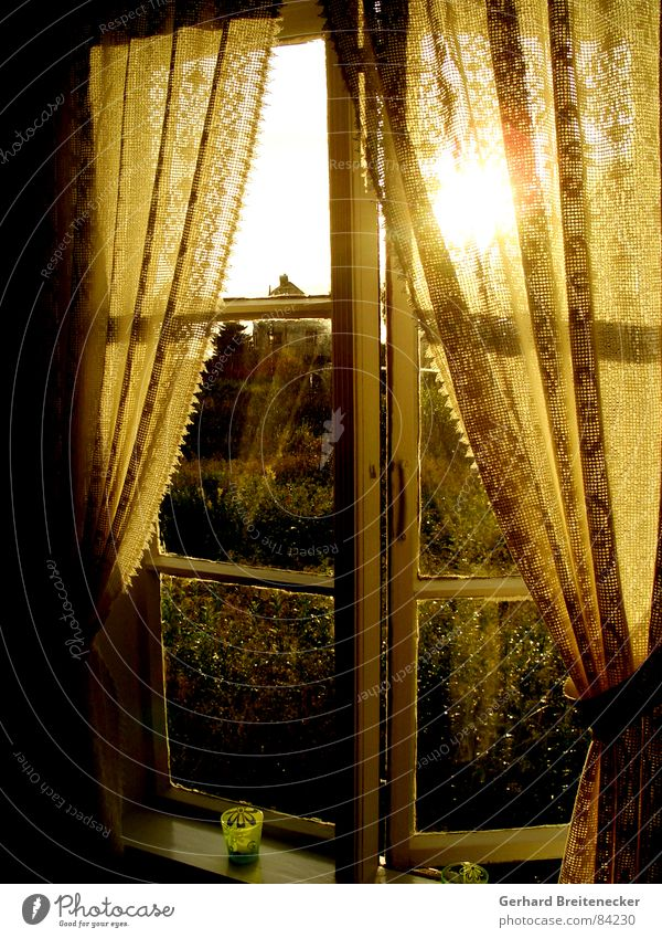 Sun Yellow Autumn Window Warmth Orange Friendliness Drape Cozy Safety (feeling of) Dusk Curtain Sincere Celestial bodies and the universe Evening sun Look out