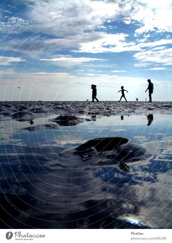 mirror beach Beach Silhouette Bathing place Darken Waterway Ocean Shadow Sky