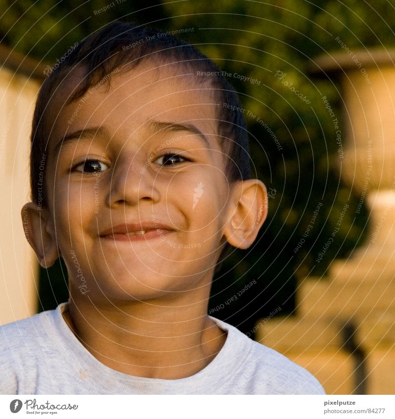 Child Nature Beautiful Summer Joy Boy (child) Laughter Funny Brown Lighting Happiness Sweet Ear Cute Near Toddler