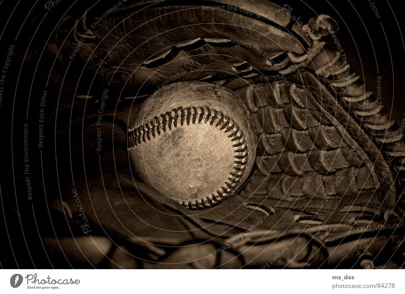 baseball Baseball Baseball glove Gloves Americas Brown Ball sports Louisville Slugger American Way of Life slugger ancient Sepia Sports