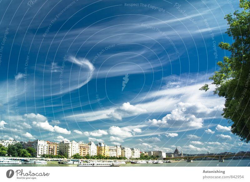 Clouds over Budapest Environment Nature Air Sky Horizon Summer Weather Beautiful weather Plant Tree River Hungary Europe Town Capital city