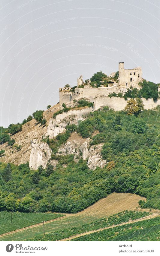 Architecture Romance Derelict Historic Destruction Production Medieval times Wine growing Federal State of Lower Austria Castle ruin
