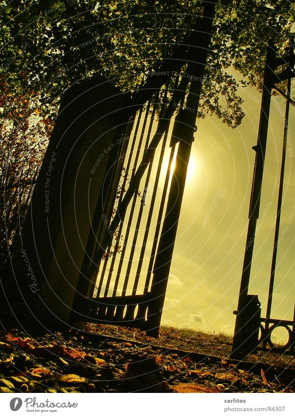 Sky Calm Autumn Death Sadness Moody Religion and faith Art Grief Peace End Transience Infinity Gate Distress Retirement