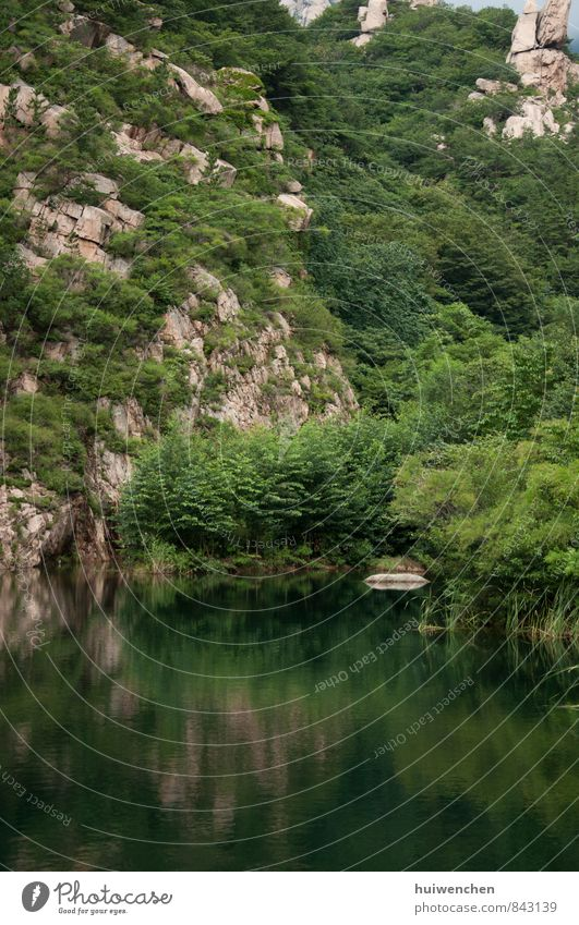 mountain and lake Nature Landscape Plant Water Summer Tree Forest Virgin forest Rock Mountain Lake Large Brown Green Serene Calm Reflection Colour photo