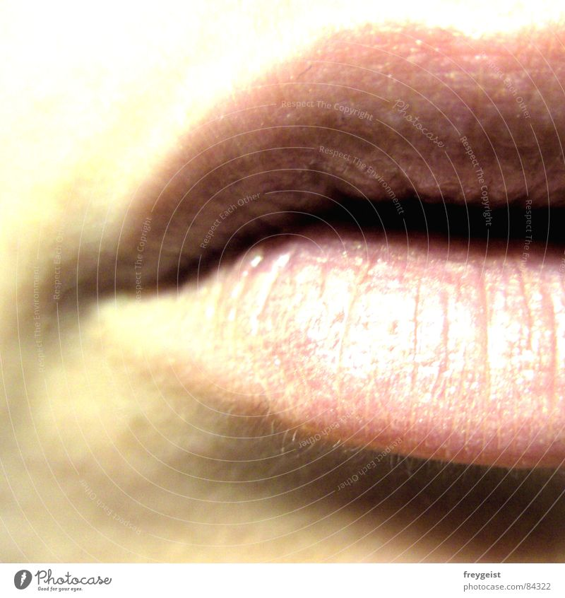 Human being Woman Glittering Skin Mouth Lips Delicate Kissing Lipgloss Lip care