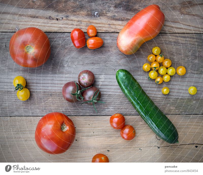 cost.bar | garden gold Food Vegetable Lettuce Salad Fruit Italian Food Nature Summer Autumn Decoration Collection Sign Design Colour Healthy Uniqueness