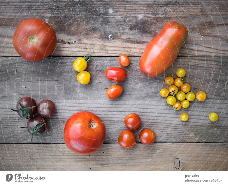 cultural diversity Vegetable Fruit Nutrition Organic produce Vegetarian diet Italian Food Nature Summer Autumn Agricultural crop Authentic Simple Happiness