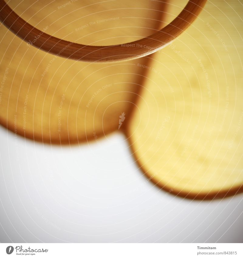 ! trash! | Lampshade Wall (barrier) Wall (building) Wood Exceptional Authentic Brown Yellow Living or residing Door handle Colour photo Interior shot Deserted