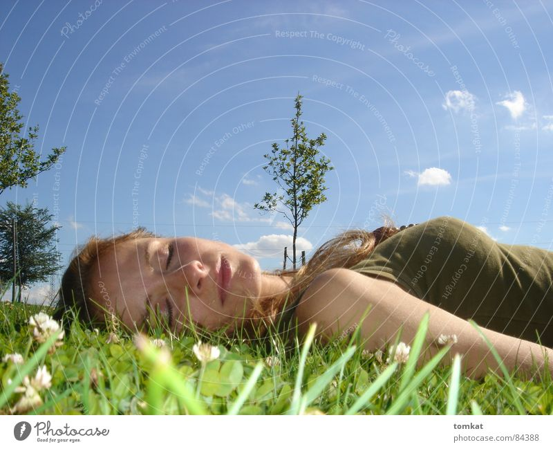 Woman Sky Nature Green Beautiful Summer Tree Flower Calm Relaxation Meadow Grass Happy Blossom Healthy Lie