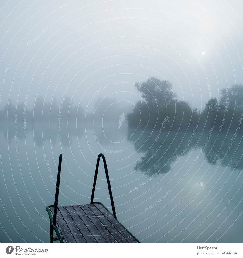 Fog lake with small sun Harmonious Relaxation Calm Swimming & Bathing Vacation & Travel Trip Environment Nature Water Sky Horizon Summer Tree Lakeside Pond