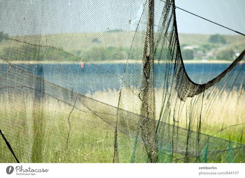 fishing net Relaxation Vacation & Travel Rügen Horizon Coast Mecklenburg-Western Pomerania Ocean Baltic Sea Boddenlandscape NP Lake Body of water Landscape Net