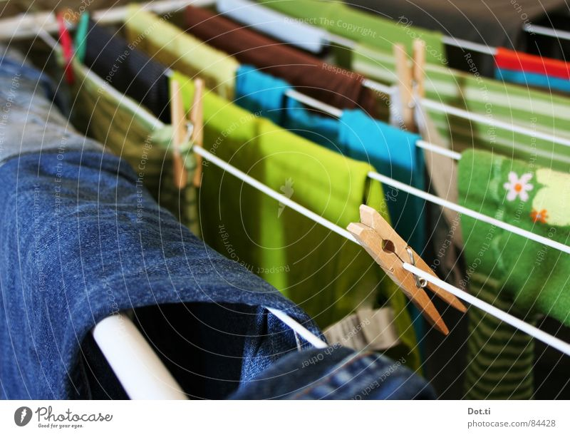 linen compulsion Living or residing Clothing T-shirt Jeans Sweater Tights Clean Dry Blue Multicoloured Green Colour Clothesline Washing day Clothes peg Textiles