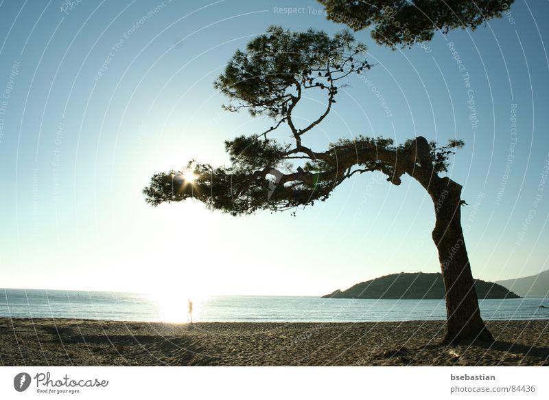 Water Ocean Spring Coast Majorca January