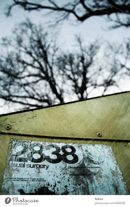 Sky Tree 2 3 Digits and numbers Box Obscure Piece of paper Tree trunk Label 8 Mailbox Service Tendril Keg Rivet