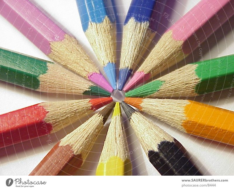 coloured pencils Crayon Things Colour Circle Point