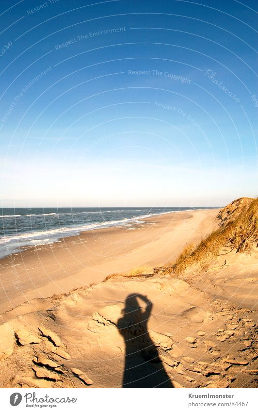 Sun Ocean Beach Landscape Empty Tracks Beautiful weather North Sea Beach dune Footprint Sky Sylt Blue sky Joint Plagues