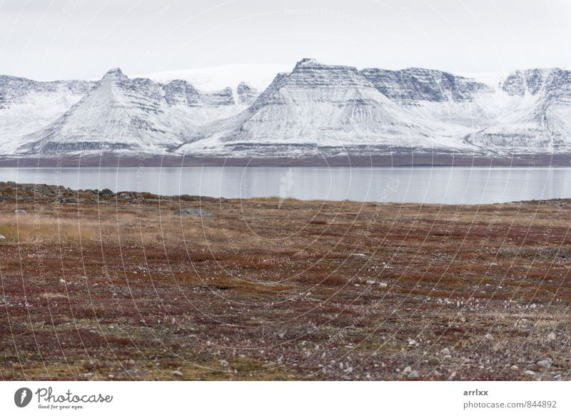 Arctic landscape in Greenland Freedom Expedition Summer Ocean Island Snow Mountain Environment Nature Landscape Autumn Disko Bay Cool (slang) Beautiful Natural