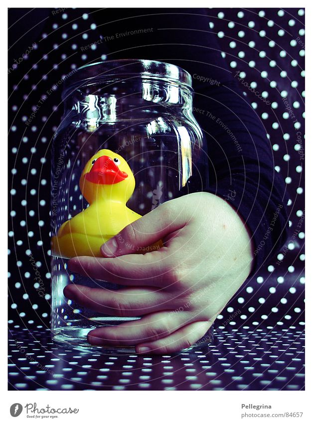 Hand Water Black Yellow Dark Friendship Arm Glass Point Duck Embrace Human being Squeak
